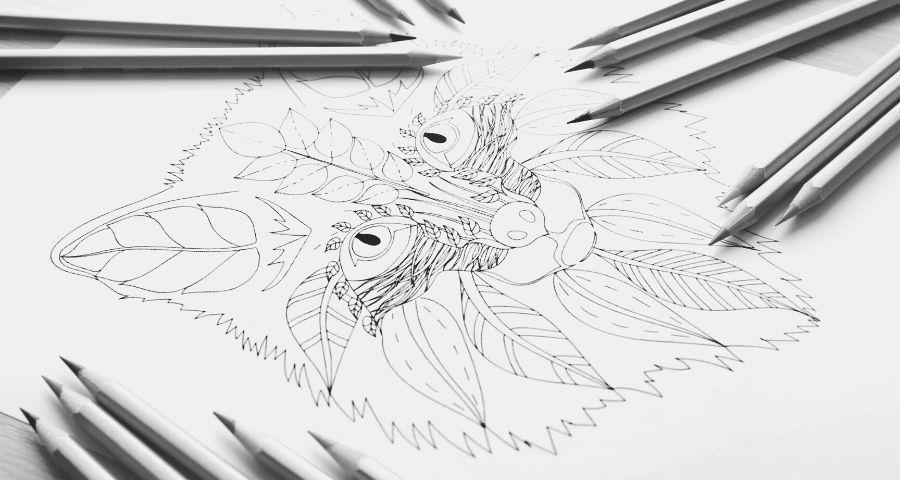 Mejores Canales Para Aprender A Dibujar