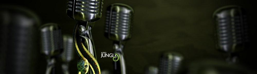 audiojungle13