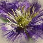 Digital illustration Flower Art