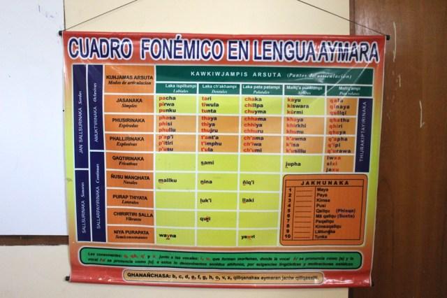 La escritura del aymara aún no ha sido homologada por una academia de la lengua y los lingüistas piden una. Foto: JS.