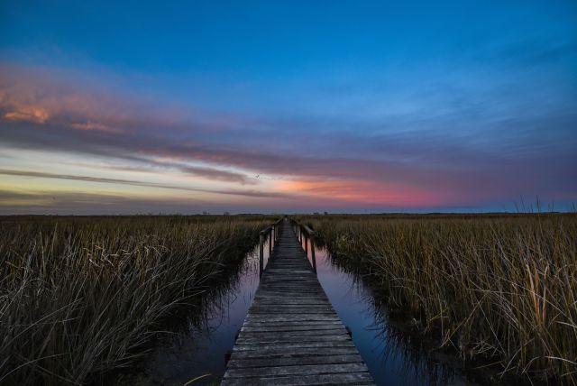 Parque Nacional Ciervo de los Pantanos (1)