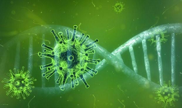 Coronavirus: origen, evolución y por qué no es igual que el SARS y el MERS