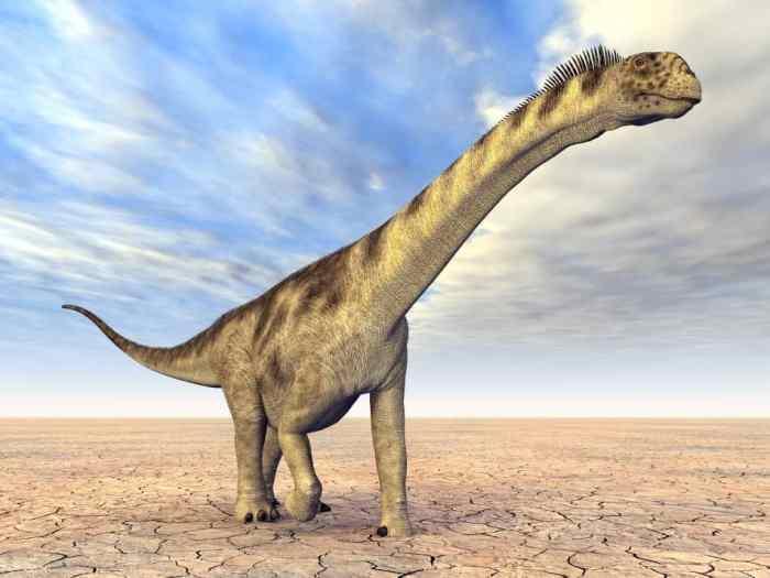 Dinozaurii povestea lor