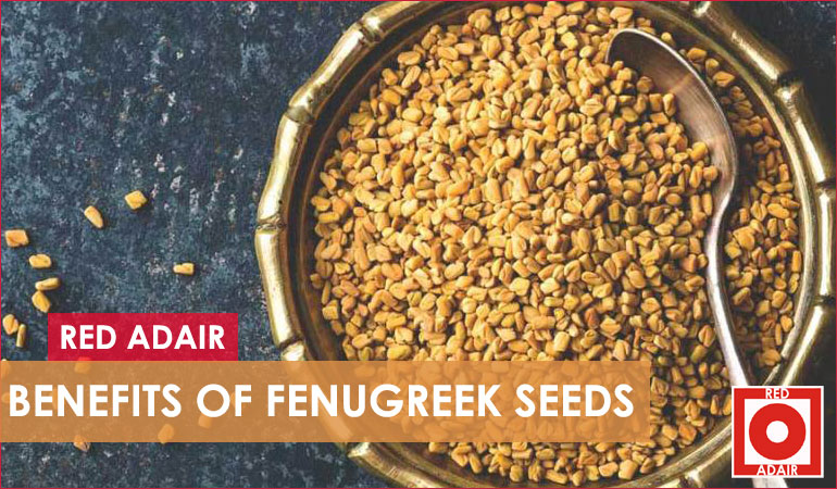 Fenugreek seeds Benefits and uses