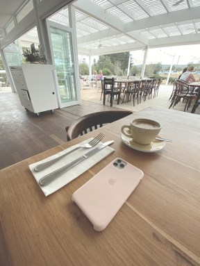 iPhone 11 Pro with the Silicon Pink Sand case