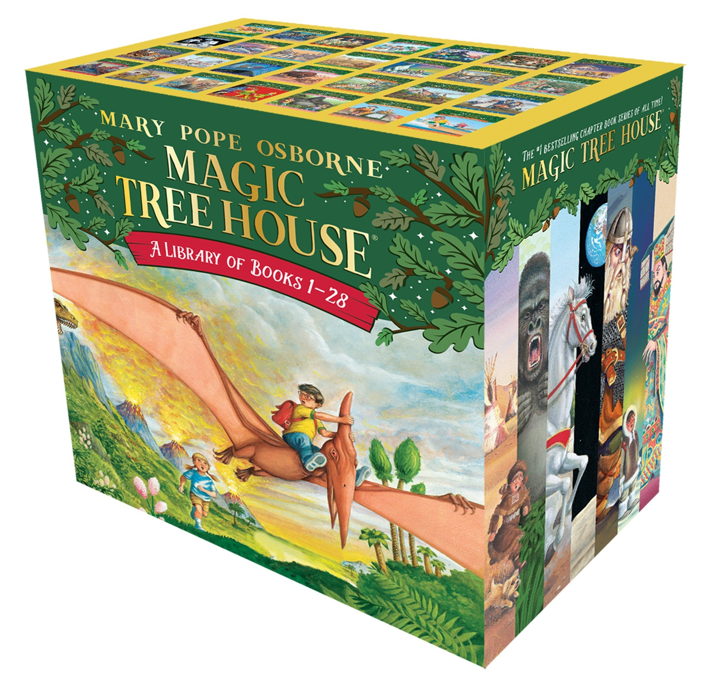 Magic Tree House Set 1 28