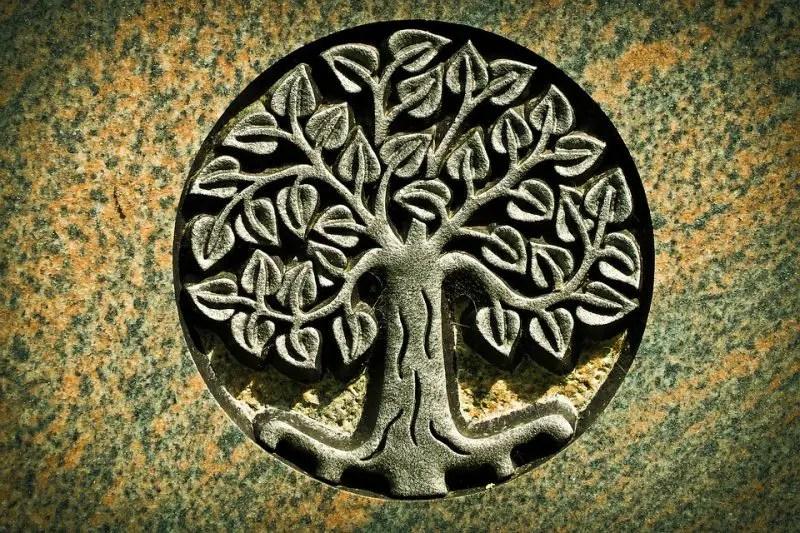 TREEOF LIFE: Meaning, Symbol, Bible