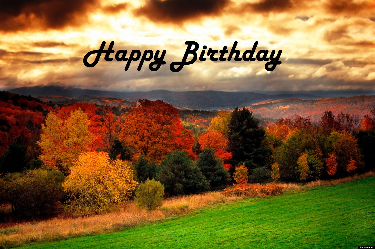 happy birthday fall Birthdays | Redbirds in a Winter Tree happy birthday fall