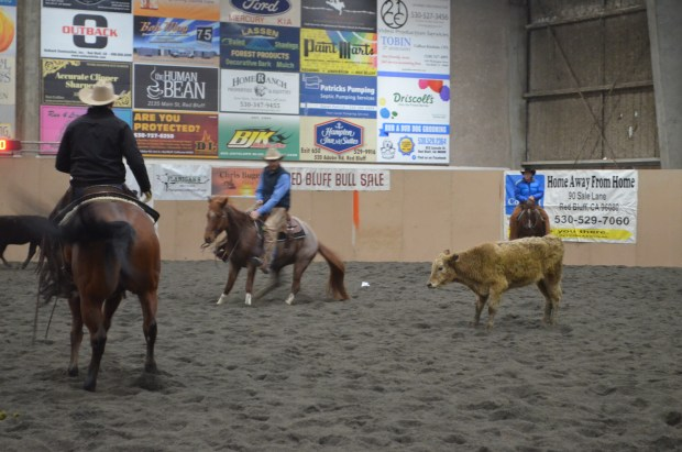 Cutting horses draw riders, attendees from all over – Red