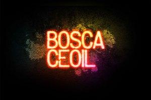 TG4's Bosca Ceoil
