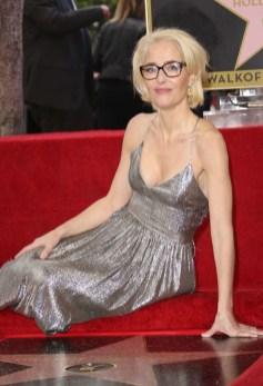 Gillian Anderson In Sophia Kah