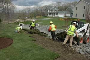 environmental benefits of landscaping