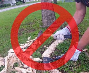 surface root damages and removal