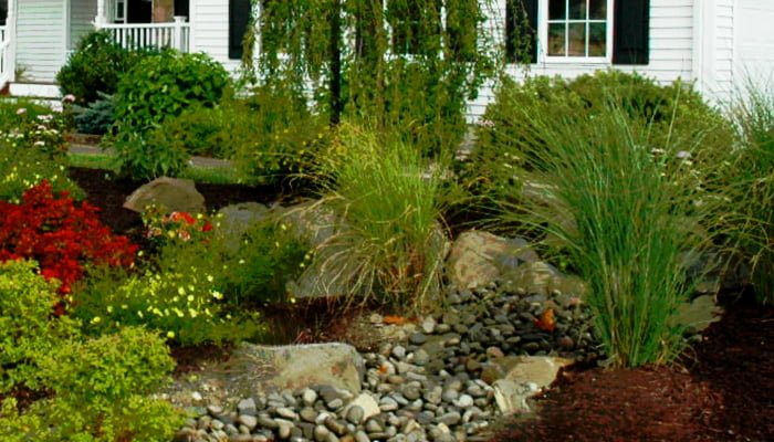 reducing summer energy bills with landscaping
