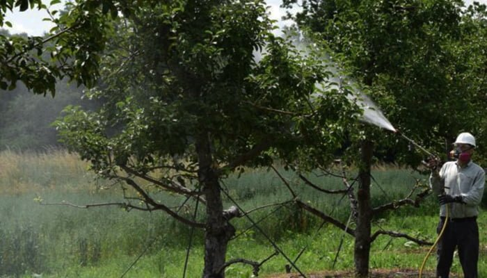 Wilt-Pruf Can Help Prevent Damage To Trees