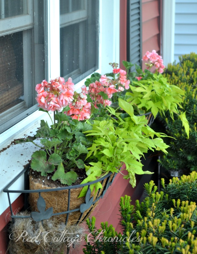 Adding a touch of summer to a small porch