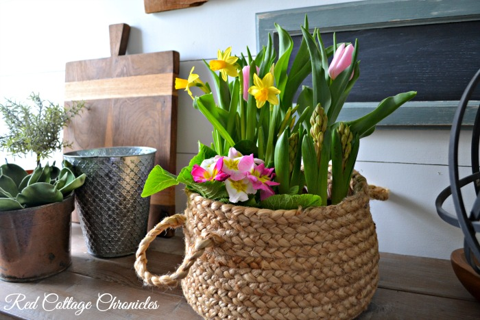 Spring Flower Basket