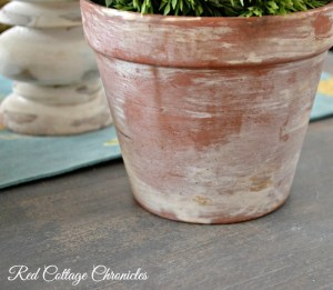 How to Age a Terracotta Pot