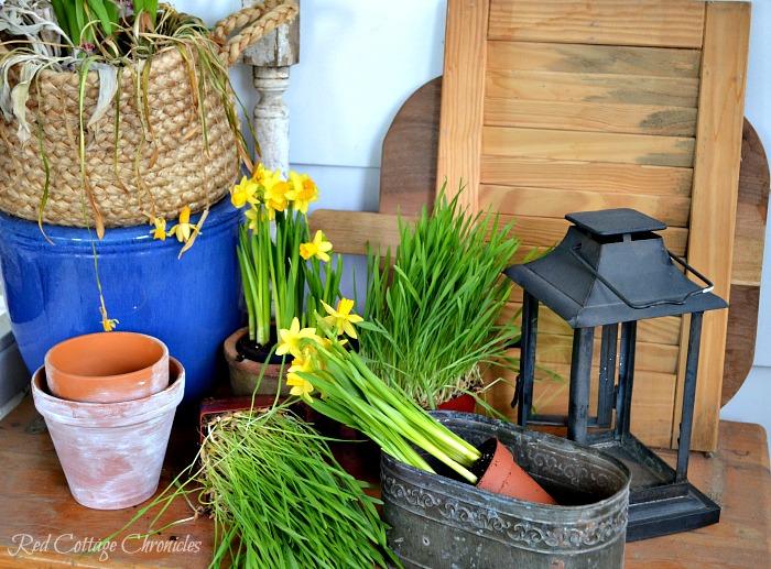 DIY Spring Planter Centerpiece