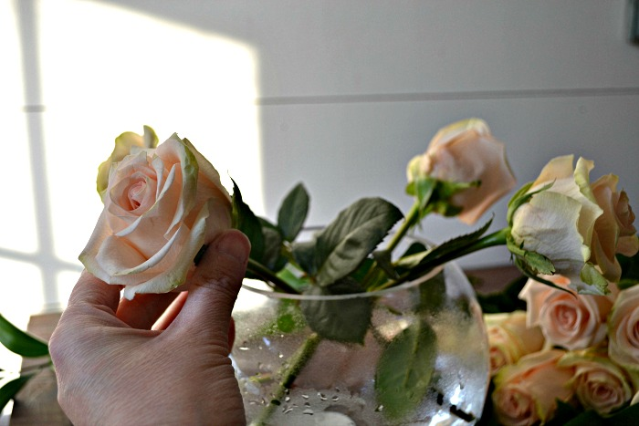 how to arrange roses from the grocery store