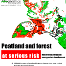 Merauke Integrated Food and Energy Estate (MIFEE) threatens peatland and forest in Papua