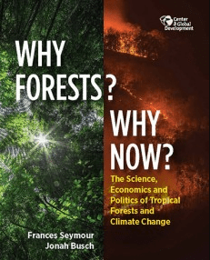 Why Forests? Why Now?