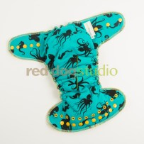 OS Octo on Teal