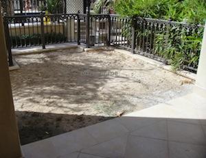 Dubai old town garden landscaping