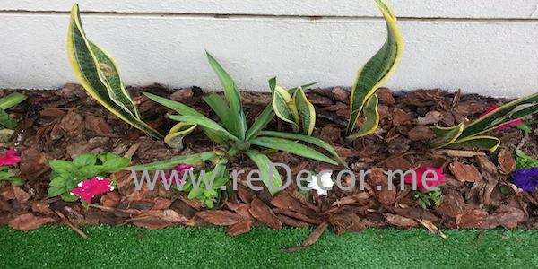 garden organising dubai