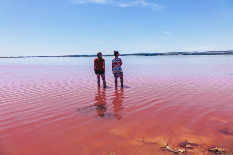 pink lake in spain torrevieja