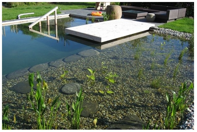 Natural Swimming Pools – backyard pool without the chemicals.