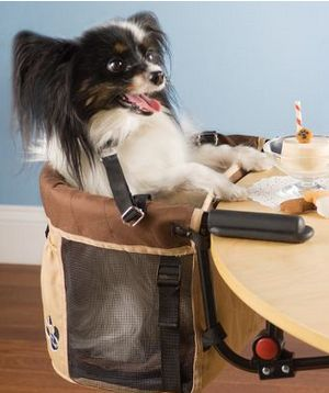 Pet High Chair – Because animals should eat at the table