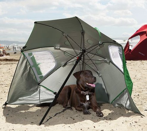 Canine's Instant Sun Shelter