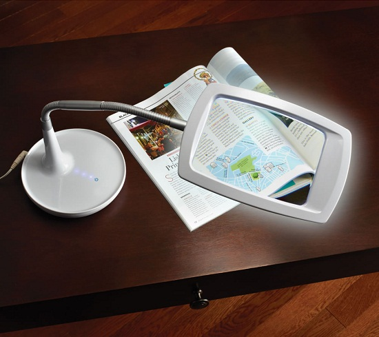 Distortion Free Magnifying Light will get you up close and personal with a book
