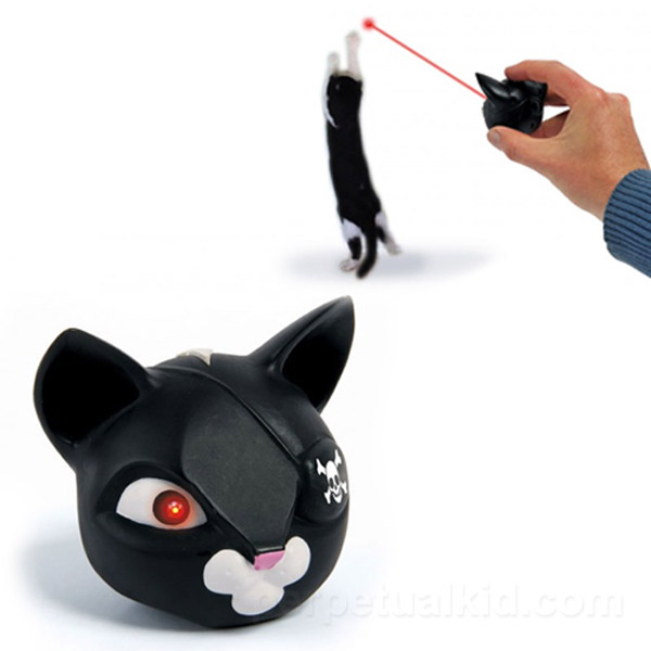 Space Pirate Kitty Laser – Can you imagine the craziness if kitty had two laser-shooting eyes?