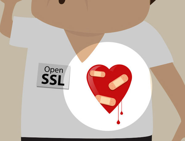 The Heartbleed Security Fiasco – 4 Steps Every User Can Take Now To Salvage Some Security