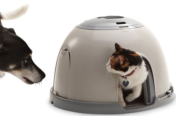 PetSafe Feeding Station – a safe cosy cafe for your small pets and their dinner