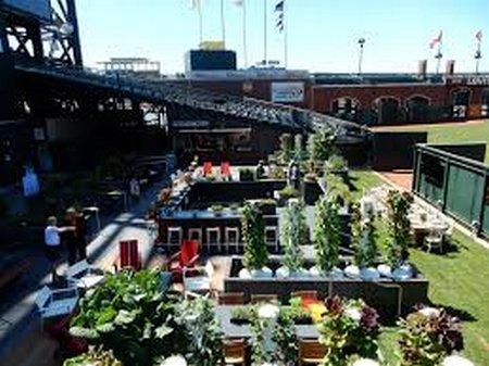 San Francisco baseball park now features its own growing garden