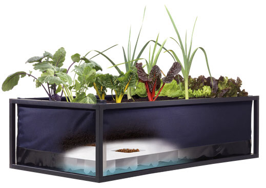 Noocity Growbed – self-sufficient urban gardening system