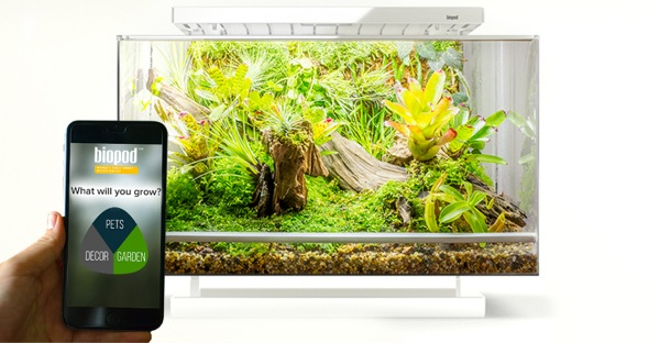 Biopod – simplify life with your scaly friends