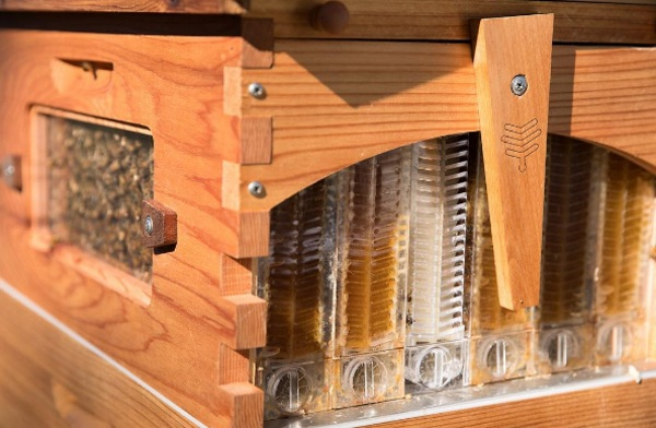 Flow Hive – a new, gentle way to get at that delicious honey