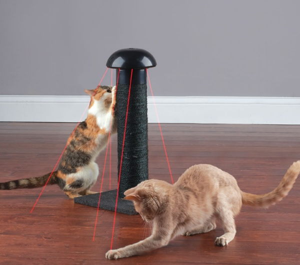 Feline's Laser Chasing Scratch Post – give your cat a work out and keep them from destroying the furniture with this gadget