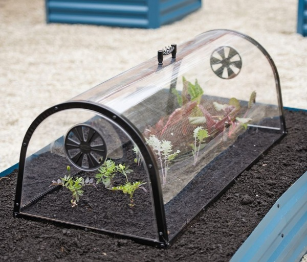 Row Garden Cloche – this mini greenhouse will keep your future food safe from four legged scavengers