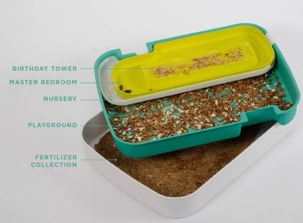 Hive 2.0 – grow your own mealworms and keep food waste out of landfills
