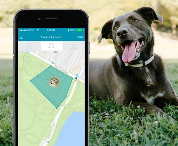 Findster Duo+ – no fee GPS pet tracker