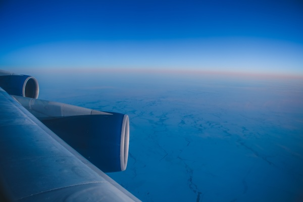 Jet Fuel From Plants – new research hopes to lower emissions from flight