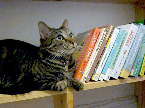 Sunday Snapshot: The Cat and the Craft Books | Red-Handled Scissors