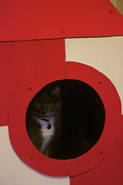 Giant Cat Crafts | Red-Handled Scissors