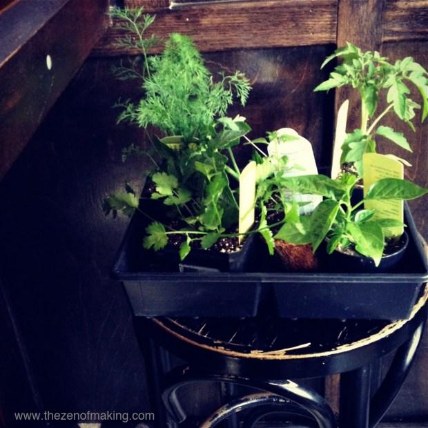 Sunday Snapshot: Vegetable Planting Day | Red-Handled Scissors