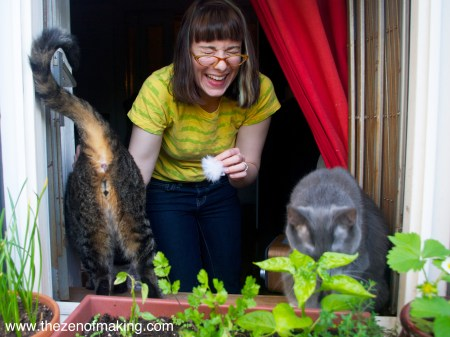 Sunday Snapshot: Funny Cat Butts for Mother's Day   Red-Handled Scissors